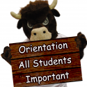 BULL-SIGN-IMAGE-ORIENTATION-2