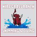 Swim Team Logo